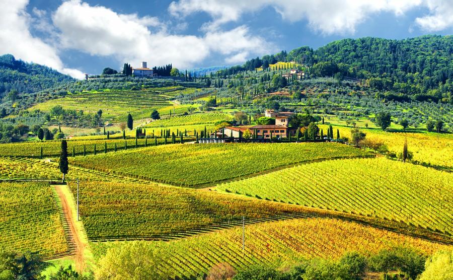 Mengenal Sektor Pertanian Italia