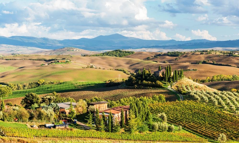 Investasi Pertanian di Italia