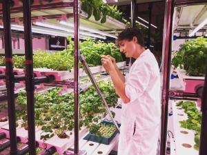 Italia Berjuang Melibatkan Generasi Muda di Bidang Pertanian